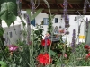 Garden_m_12
