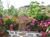 Garden_m_09
